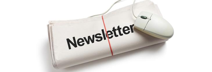 email newsletter for wordpress