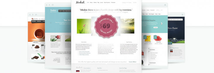 Elegant Themes frontend